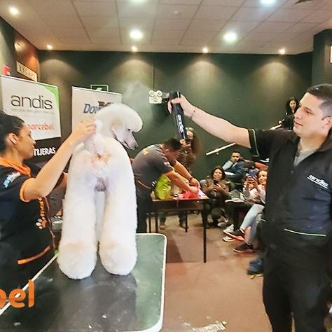 Evento-Internacional-de-Grooming-Alexander-Zapata-Lima-Setiembre-2019-13